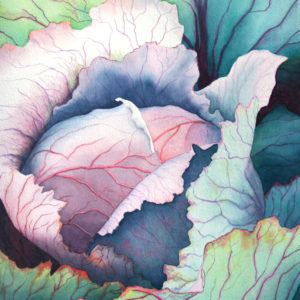 """Rachel Collins, """"Cabbage at Green Spring"""" Watercolor"""