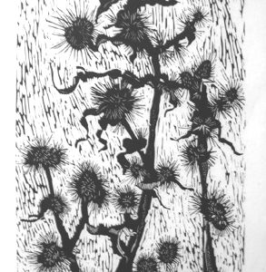 """""""Thistle"""" by Ed McCluney"""